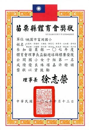 2018_10_13:苗栗縣107年度體育會理事長盃躲避球錦標賽-