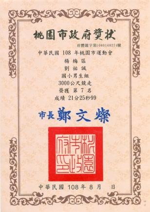 2019_08_23~24:108年桃園市運動會-